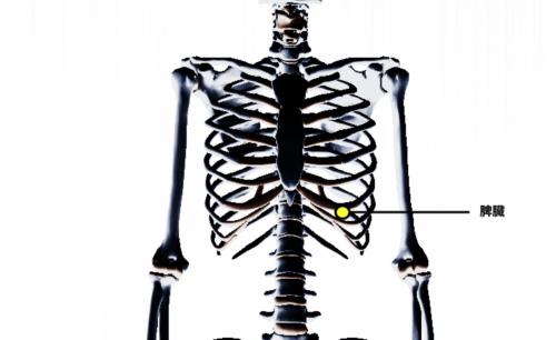 下 左 違和感 肋骨